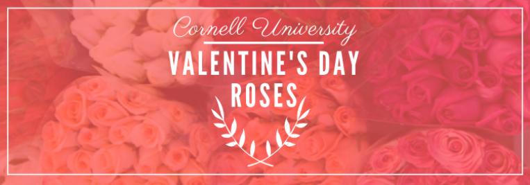 Cornell University Valentines Day