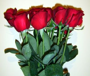Six Bundled Red Roses